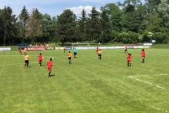 Finale Coupe Crédit Mutuel Féminines 21-05-2018 (4)