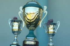 SSW Victoire en Coupe CMDP 19-06-2005 (2)